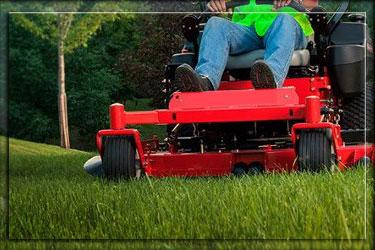 Lawn Maintenance Odessa Florida
