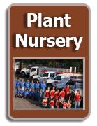 Plant Nursery Tampa Florida